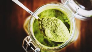 Don't Miss These Posts On Official Kratom Forum…